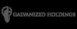 Galvanized Holdings